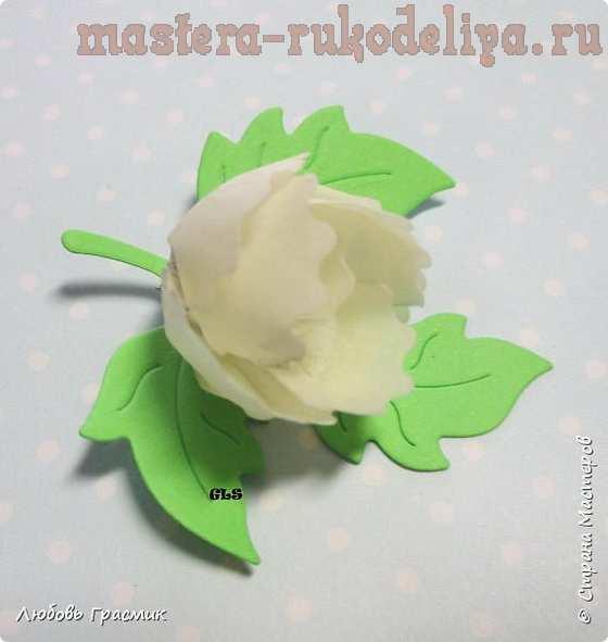Мастер-класс по созданию цветов из бумаги: Быстрые цветочки