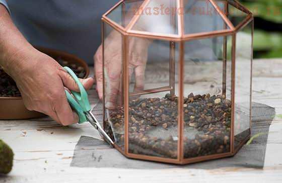 Фото мастер-класс по флористике: Флорариум своими руками