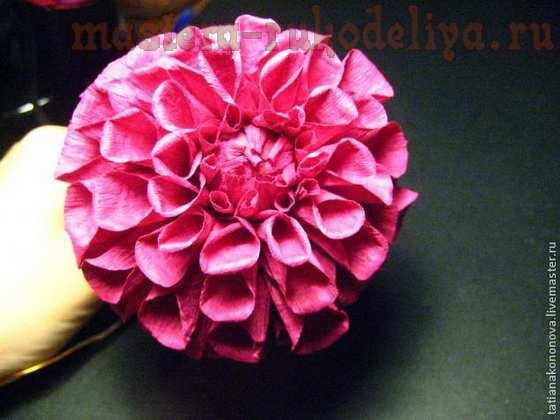 Мастер-класс по созданию цветов из бумаги: Георгины