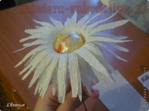 Мастер-класс по свит-дизайну: Хризантемы