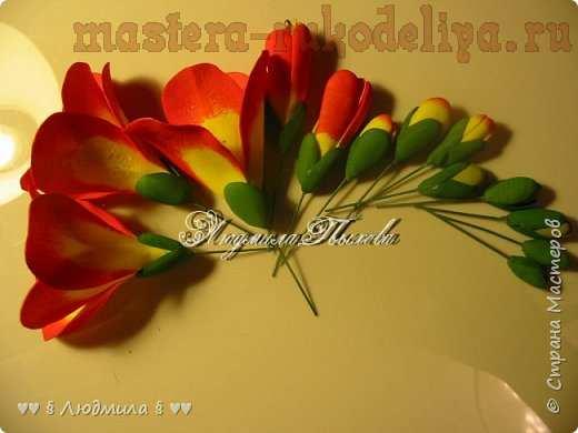 Мастер-класс по цветам из фоамирана: Фрезия