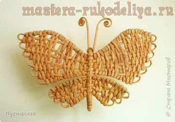 Мастер-класс по плетению из газет: Бабочка