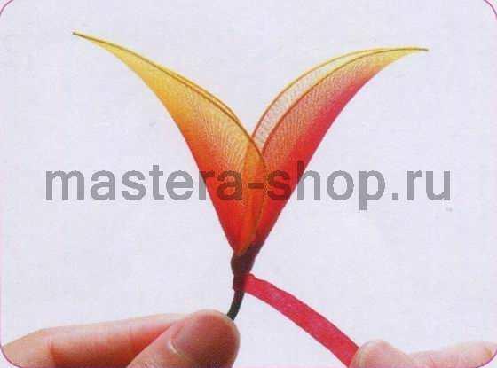 Мастер-класс по созданию цветов из капрона: Геликония