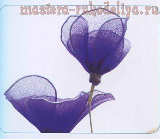 Мастер-класс по созданию цветов из капрона: Глоксиния
