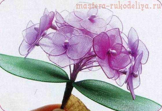 Мастер-класс по созданию цветов из капрона: Гортензия