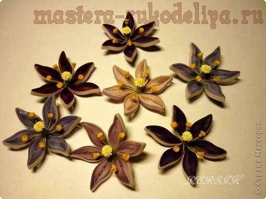 Мастер-класс по квиллингу: Болотные цветы