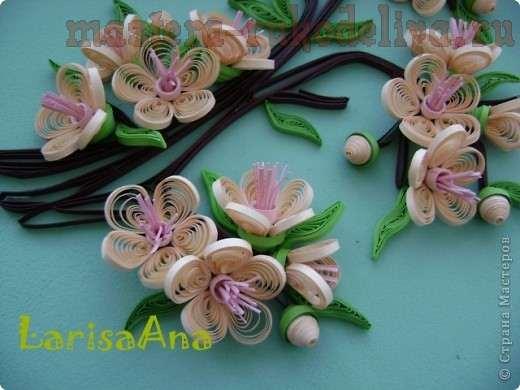 Мастер-класс по квиллингу: Цветок персика