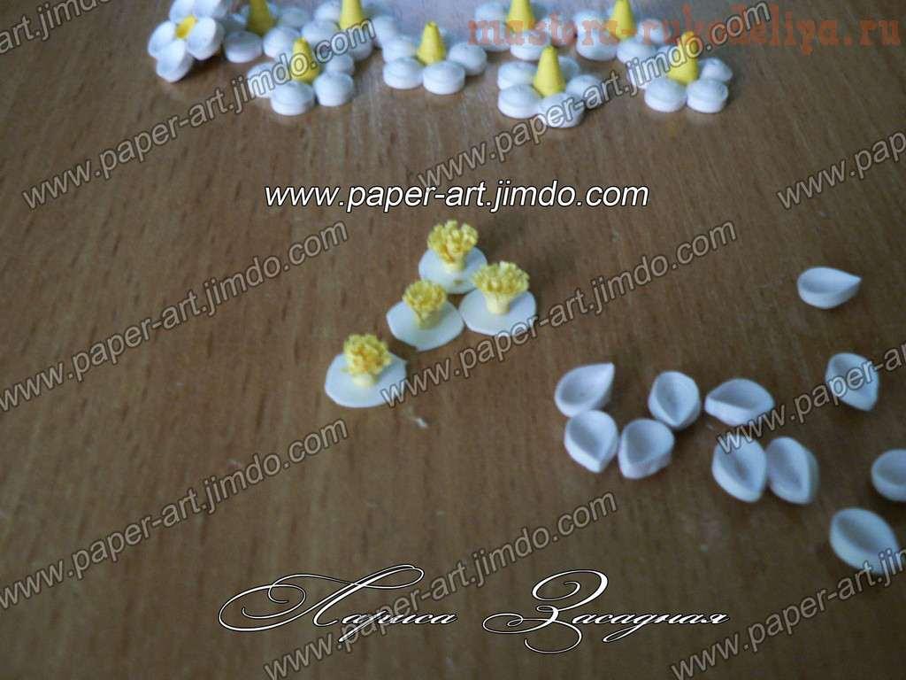Мастер-класс по квиллингу: Цветы черемухи