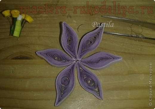 Мастер-класс по квиллингу: Как сделать цветы с тычинками