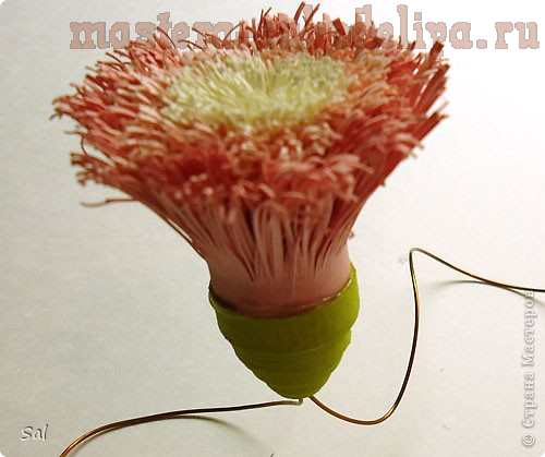 Мастер-класс по квиллингу: Хризантемы из бахромы