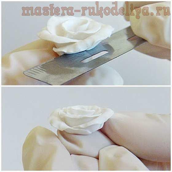 Мастер-класс по лепке из полимерной глины: Комплект; Нежность.