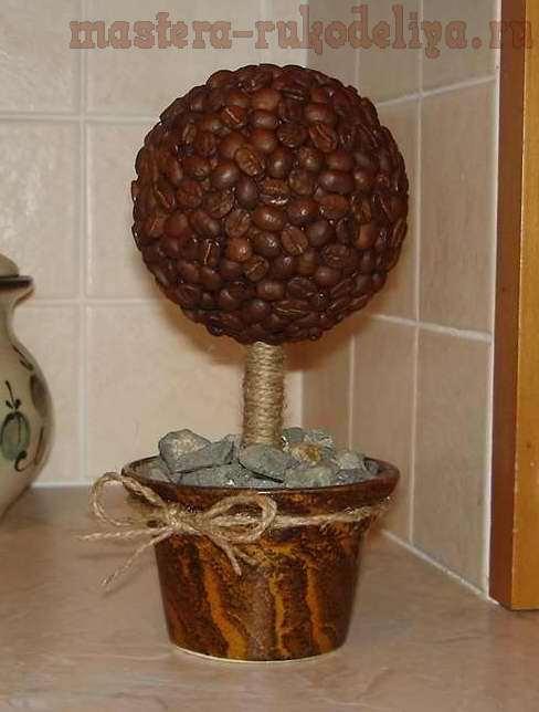 Делаем топиарий Кофейное дерево своими руками