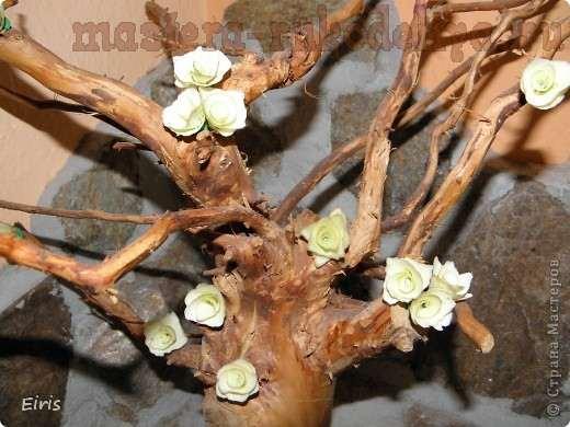 Деревянные розочки - тестируем ветки разных деревьев