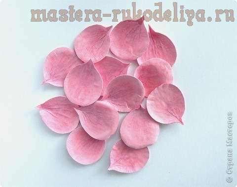 Мастер-класс: Цветы из бумаги - Роза