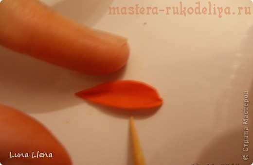 Мастер-класс по лепке из соленого теста: Фоторамка Календула
