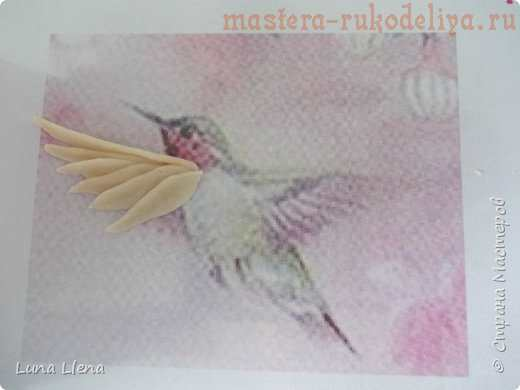 Мастер-класс по лепке из соленого теста: Колибри