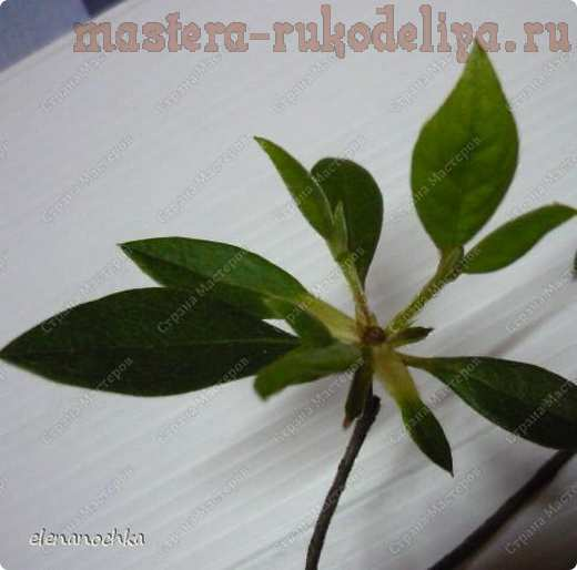 Мастер-класс по лепке из холодного фарфора: Азалия