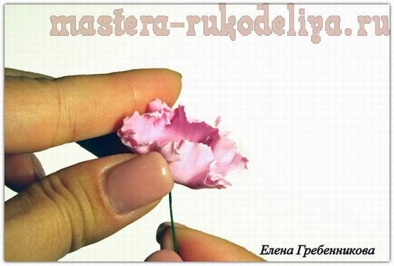Мастер-класс по керамической флористике: Брассика