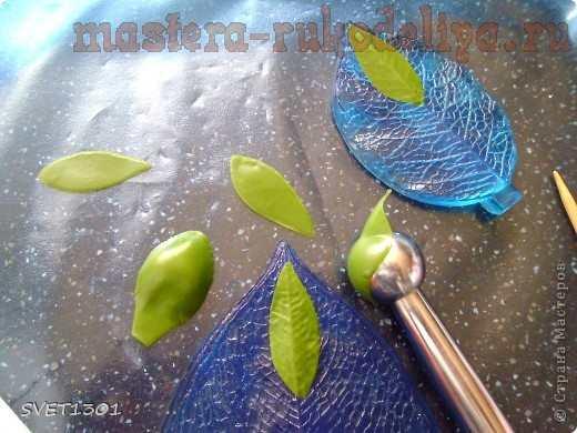 Мастер-класс по лепке из холодного фарфора: Древовидный пион